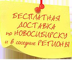 Бесплатная доставка в Кемерово Омск Томск Новокузнецк Барнаул Бийск Горно-Алтайск Рубцовск Ленинск-Кузнецкий